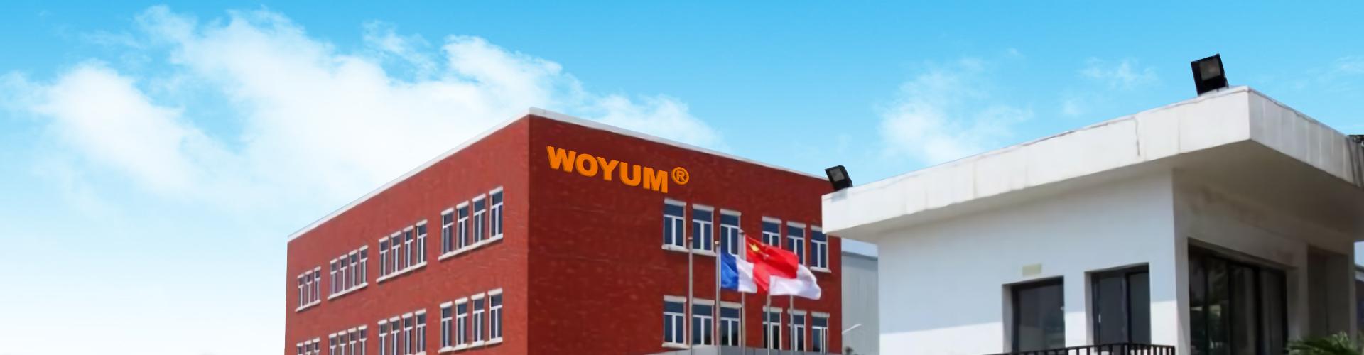 High-quality Manufacturing Of Multi Port Usb Car Charger | Woyum-Woyum