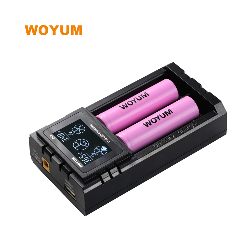 Intelligent charger Universal Smart Battery Charger 2 slots for 18650