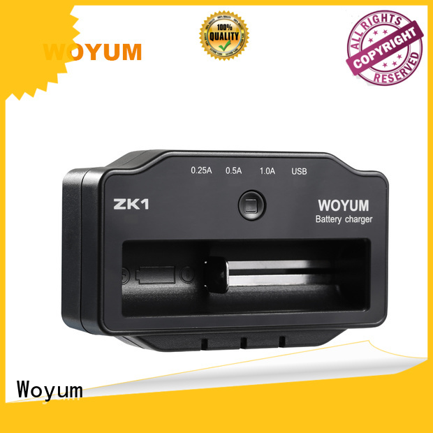 Woyum intelligent smart battery charger supplier for Ni-MH