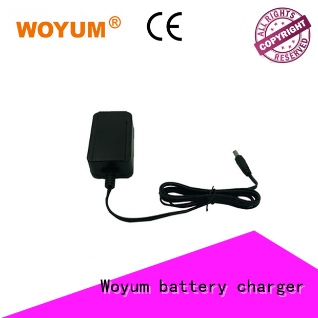 Woyum electrical ac adapter cord supplier for routers
