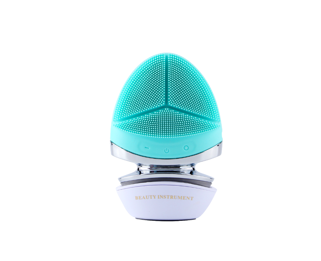Cleansing Brush