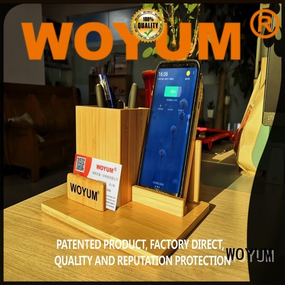 Woyum compact power bank with pen container for iPhone