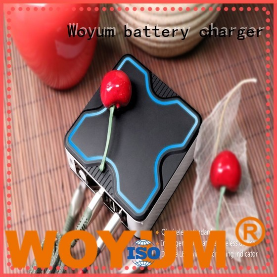 Woyum Custom power bank 10000mah manufacturers for Android