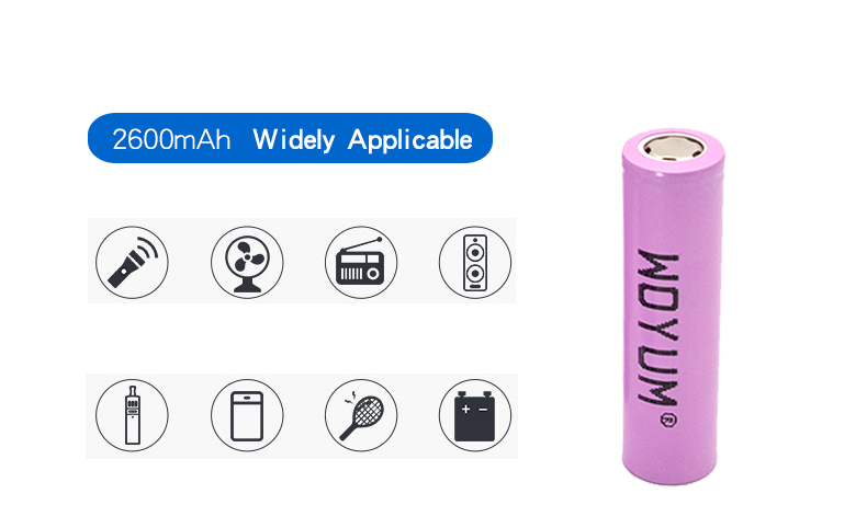 Woyum -Professional Aa Battery Charger Quick Battery Charger Supplier