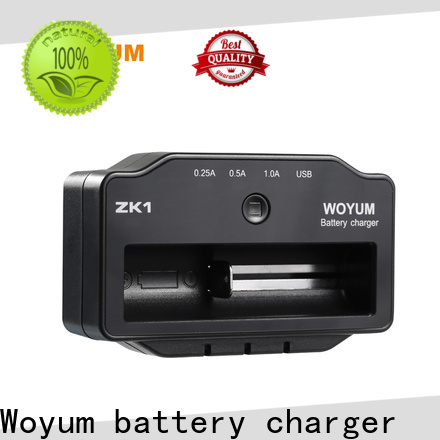 Top best aa battery charger manufacturers for Ni-Cd