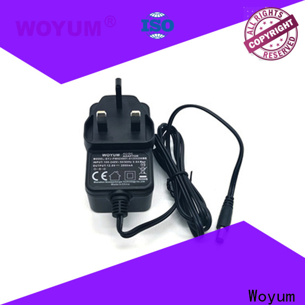 Woyum High-quality ac power adapter company for power tools