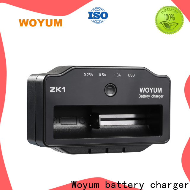 Woyum New smart battery charger Supply for Ni-Cd
