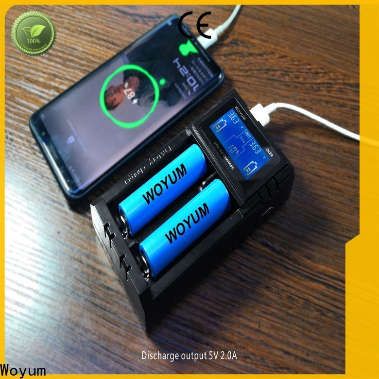 Woyum New intelligent battery charger factory for Li-ion