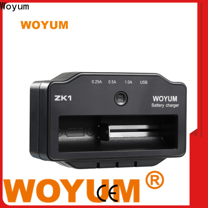 Woyum Wholesale intelligent battery charger Suppliers for Ni-MH