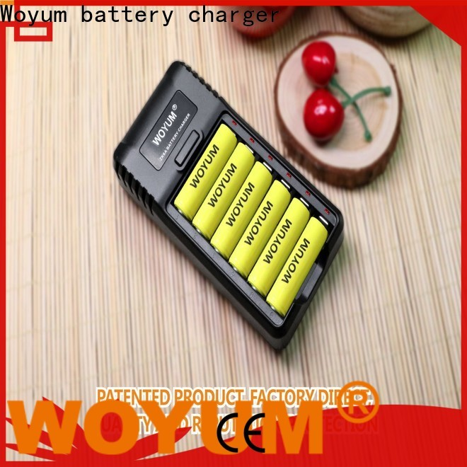 Woyum Custom best aa battery charger company for Ni-Cd