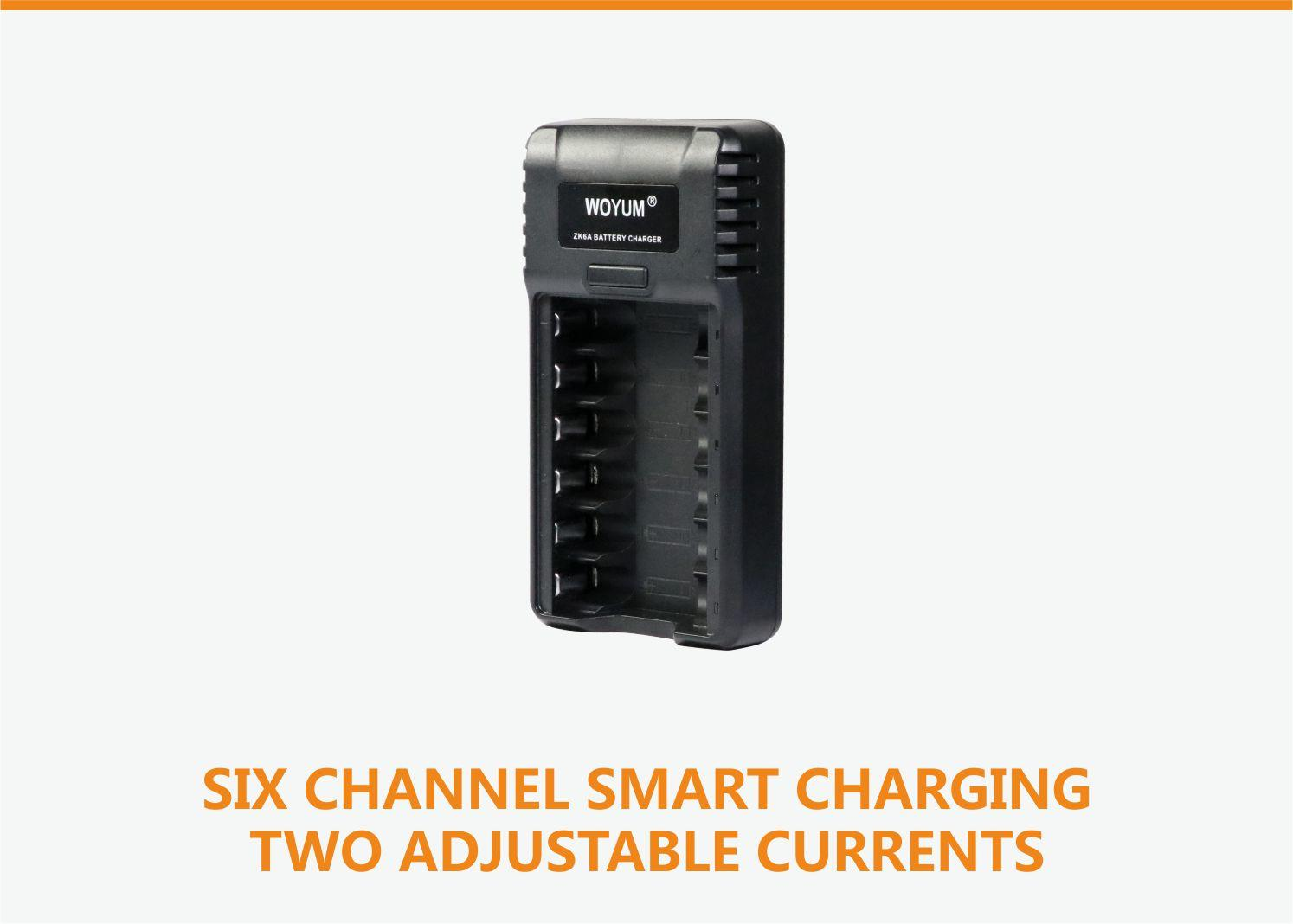 Woyum smart battery charger company for Ni-Cd-1