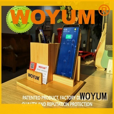 Woyum High-quality power bank 10000mah company for iPhone