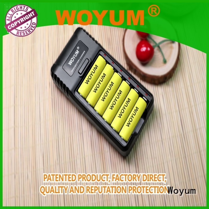Woyum best aa battery charger supplier for Ni-MH