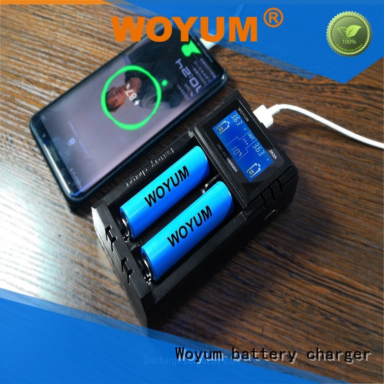 Woyum Custom best aa battery charger Supply for Ni-Cd