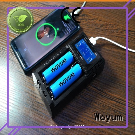 Woyum High-quality intelligent battery charger factory for Ni-MH