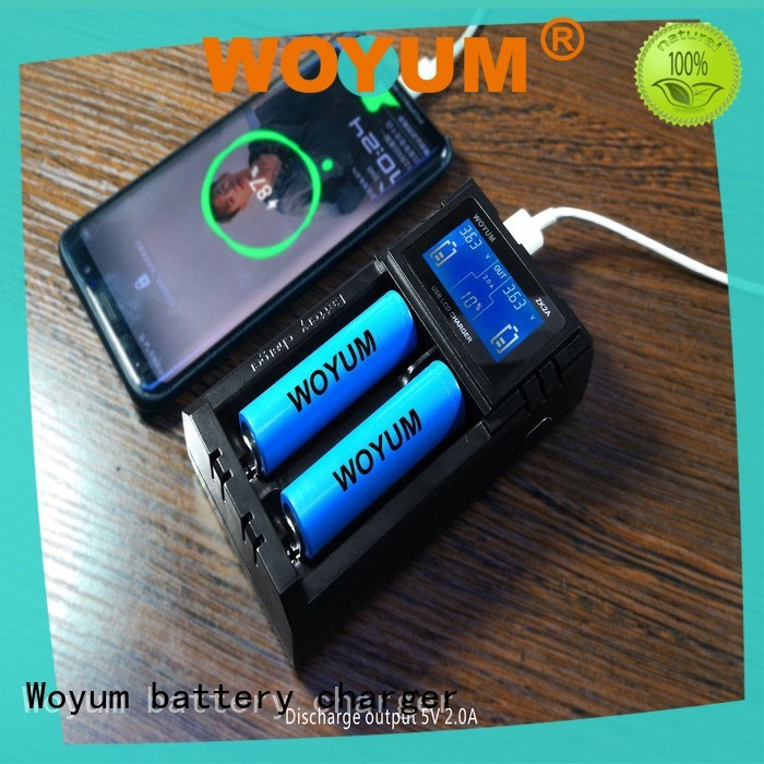 Woyum intelligent intelligent battery charger manufacturer for IMR
