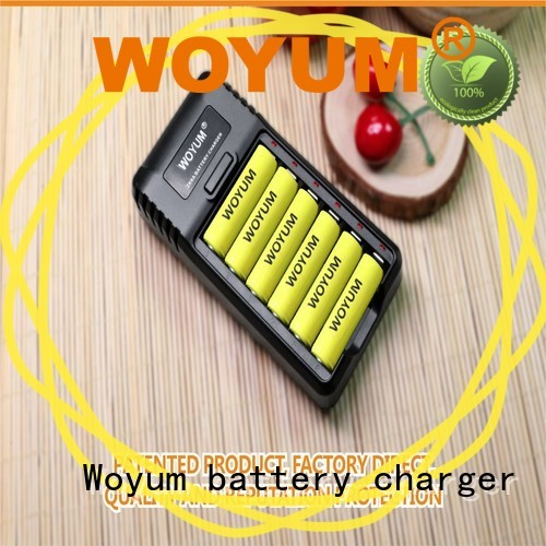 Top best aa battery charger factory for Ni-Cd