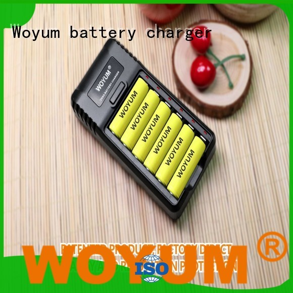 Woyum online intelligent battery charger wholesale for Ni-Cd