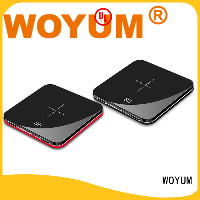 Woyum electric nimh charger wholesale