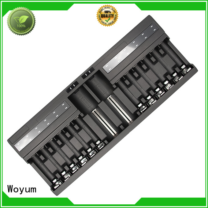 Woyum best aa battery charger manufacturer for IMR