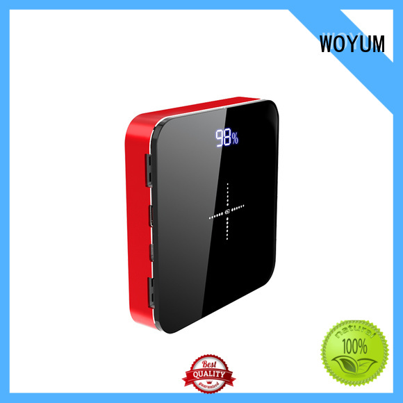 intelligent nimh charger wholesale Woyum